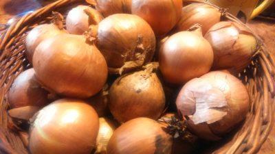 cebula-łupiny na alergie, na uspokojenie, kwercetyna w łupinach cebuli